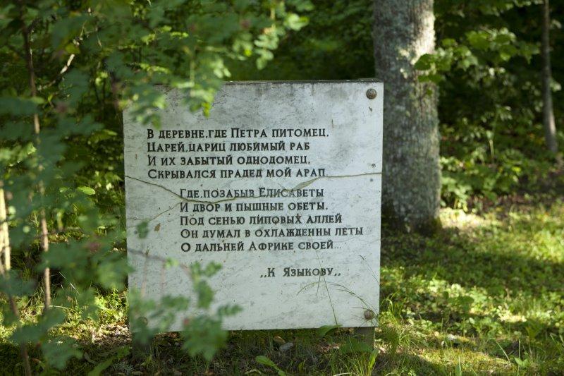 petrovskoe04